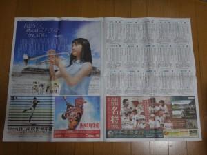 夏の甲子園2016~甲子園グッズ~(33)14