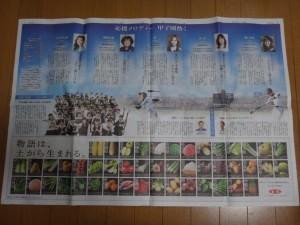 夏の甲子園2016~甲子園グッズ~(33)15