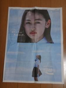 夏の甲子園2016~甲子園グッズ~(33)19