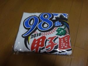 夏の甲子園2016~甲子園グッズ~(33)33
