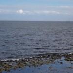 新木場でちょっくら海の開放感を