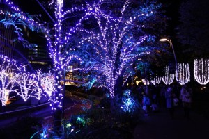 「MIDTOWN CHRISTMAS 2015」(上)17
