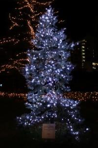 「MIDTOWN CHRISTMAS 2015」(上)11