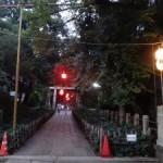 盆踊りであのゆったりさの祭りを楽しめた「赤坂氷川神社例大祭」