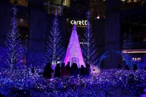 「Caretta Illumination 2015『カノン・ダジュール Canyon d'Azur~青い星の谷~』」18