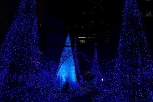 「Caretta Illumination 2015『カノン・ダジュール Canyon d'Azur~青い星の谷~』」20