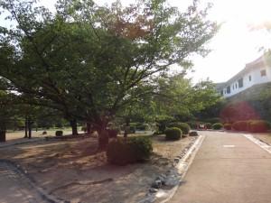 姫路城西の丸(下)(18)