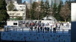 アイススケート15