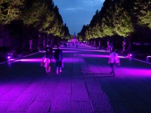「靖国神社 秋の夜長参拝 みらいとてらす―秋を彩る九段の光―」(上)(8)