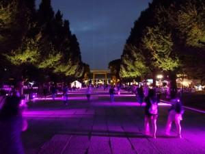 「靖国神社 秋の夜長参拝 みらいとてらす―秋を彩る九段の光―」(上)(10)