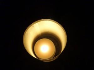「靖国神社 秋の夜長参拝 みらいとてらす―秋を彩る九段の光―」(上)(17)