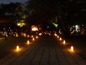 「靖国神社 秋の夜長参拝 みらいとてらす―秋を彩る九段の光―」(上)(21)