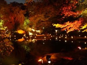 「靖国神社 秋の夜長参拝 みらいとてらす―秋を彩る九段の光―」(下)(9)
