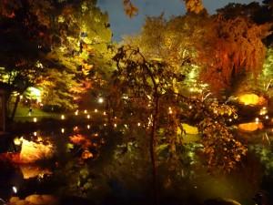 「靖国神社 秋の夜長参拝 みらいとてらす―秋を彩る九段の光―」(下)(10)