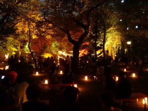 「靖国神社 秋の夜長参拝 みらいとてらす―秋を彩る九段の光―」(下)(11)