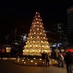 今年は記念すべきイルミネーションとなった「Roppongi Hills 10th Anniversary Christmas」