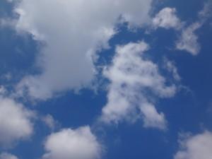 「第33回 江東区民まつり 中央まつり」(上)(1)