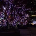 東京ミッドタウンのイルミネーションはやはりすごい! 『MIDTOWN CHRISTMAS 2014』(下)