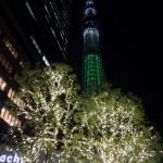 プロジェクションマッピングが注目の「東京スカイツリータウン イルミネーション2013」