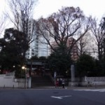 金王丸の流れをくむ渋谷氏の居城として戦国時代まで続いた「渋谷城」(跡)