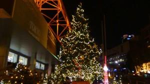 「オレンジ・イルミネーション」と「クリスマス・ライトダウンストーリー」16