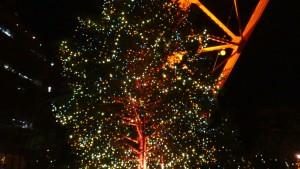 「オレンジ・イルミネーション」と「クリスマス・ライトダウンストーリー」13
