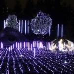 東京ミッドタウン全体でイルミネーションが楽しめた、「MIDTOWN CHRISTMAS 2016」(上)