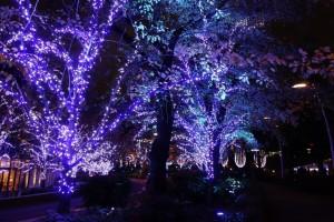 「MIDTOWN CHRISTMAS 2016」(下)6