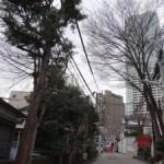 高低差のある地形で、今は住宅街になった「番神山城」