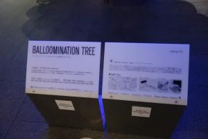 今年も六本木ヒルズの華やかなイルミネーションが楽しめました。(下)17