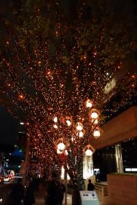 今年も六本木ヒルズの華やかなイルミネーションが楽しめました。(上)13