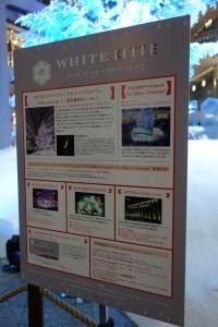 「WHITE KITTE」3