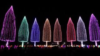 今年はこれまでと違ったオシャレな自然感じが加わった「光の祭典2016」(下)