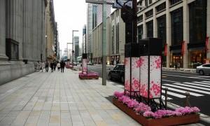 桜の演出で彩った日本橋