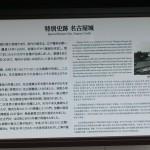 ようやく、「名古屋城」を見れました!