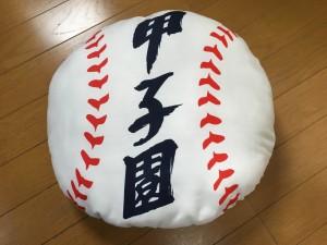 センバツ2016を見に行ったぞ!~高校野球グッズ 編~(39)4