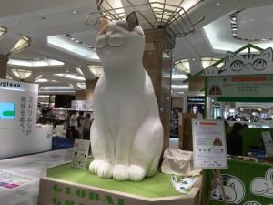 日本橋三越に巨大猫6