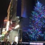 銀座にジャンボクリスマスツリー登場!?