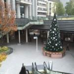 御茶ノ水ソラシティのクリスマスツリー