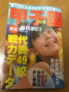 夏の甲子園2016~甲子園グッズ~(33)35