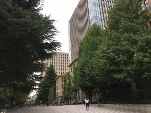 早稲田大学に行ってもグッズを買ってきました(笑)。1