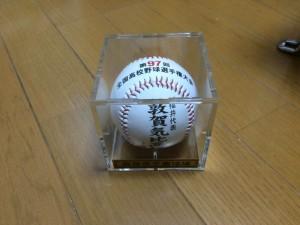 「第97回全国高校野球選手権大会」を見に行ってきました!(16)~お土産~(3)