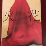 クライマックスに熱い感じが楽しめた、小説『火花』(又吉 直樹)