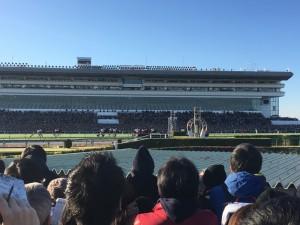 独特な盛り上がりの雰囲気を感じた「第61回 有馬記念」8