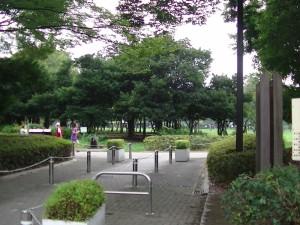 「ザ・よさこい! 大江戸ソーラン祭り」(上)(2)