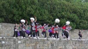 「ザ・よさこい! 大江戸ソーラン祭り」(上)(12)