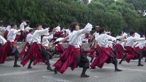 「ザ・よさこい! 大江戸ソーラン祭り」(下)(7)