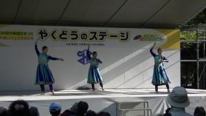 「ふれあいフェスタ2015(第36回 大新宿区まつり)」(上)(17)