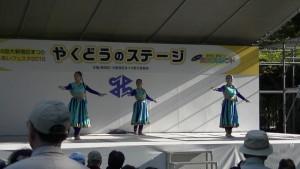 「ふれあいフェスタ2015(第36回 大新宿区まつり)」(上)(18)