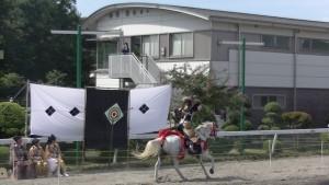 「第47回 愛馬の日」(中)(17)